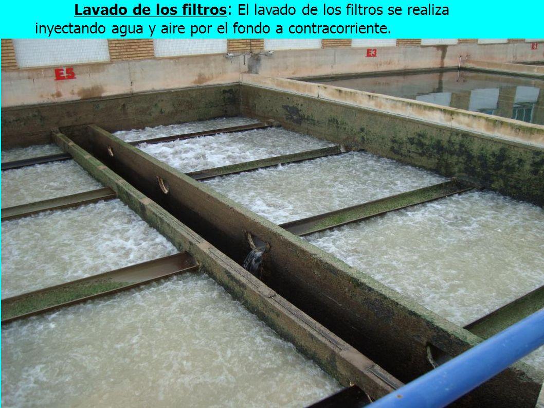 25 Lavado de los filtros : El lavado de los filtros se realiza inyectando agua y aire por el fondo a contracorriente.