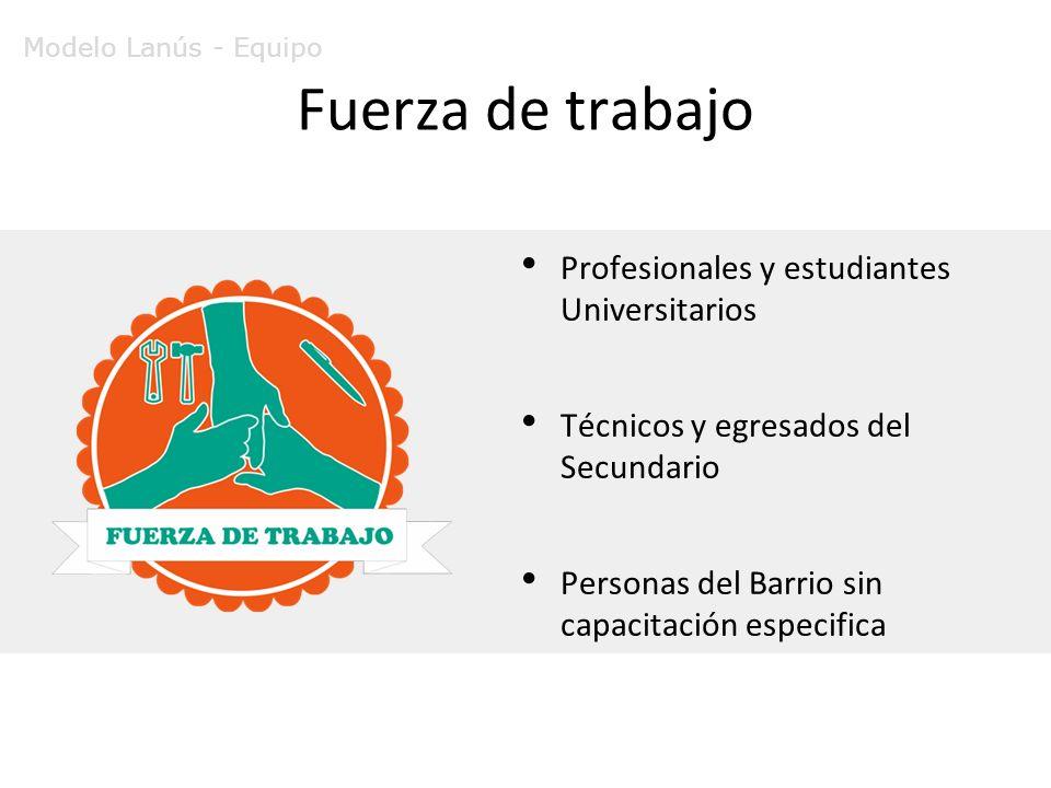 Fuerza de trabajo Profesionales y estudiantes Universitarios Técnicos y egresados del Secundario Personas del Barrio sin capacitación especifica Modelo Lanús - Equipo