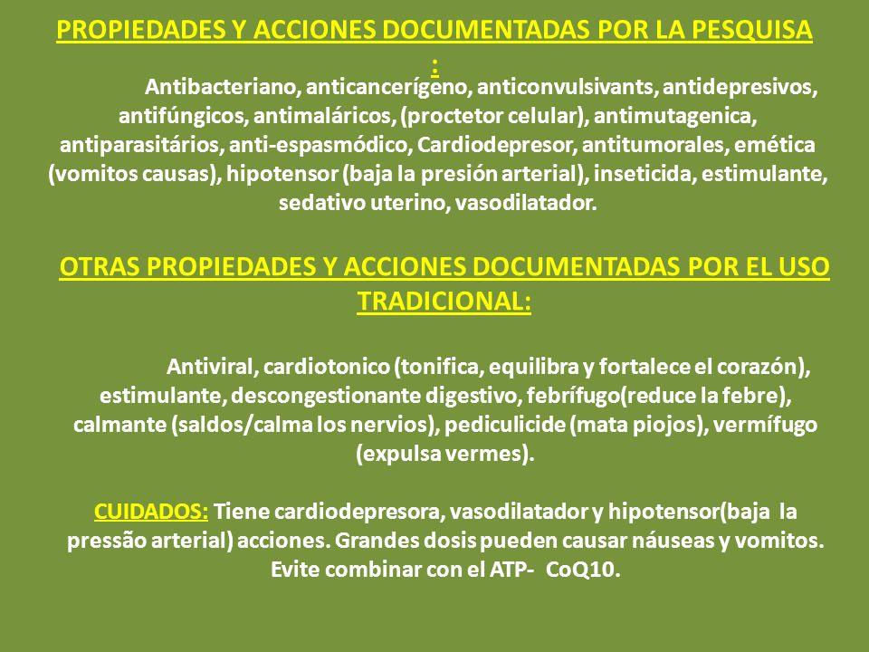 GUANÁBANA SOURSOUP GRAVIOLA ANNONA GRAVIOLA: SÍNTESE DE LA PLANTA Principales Acciones (en orden): Anticancerígenas, antitumorales, antimicrobianos, a