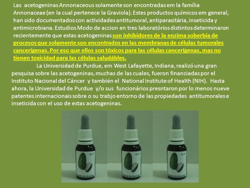 PLANTA QUÍMICA Muchos compuestos activos y productos químicos fueron encontrados em la graviola, como los cientistas tienen estudado sus propiedades d
