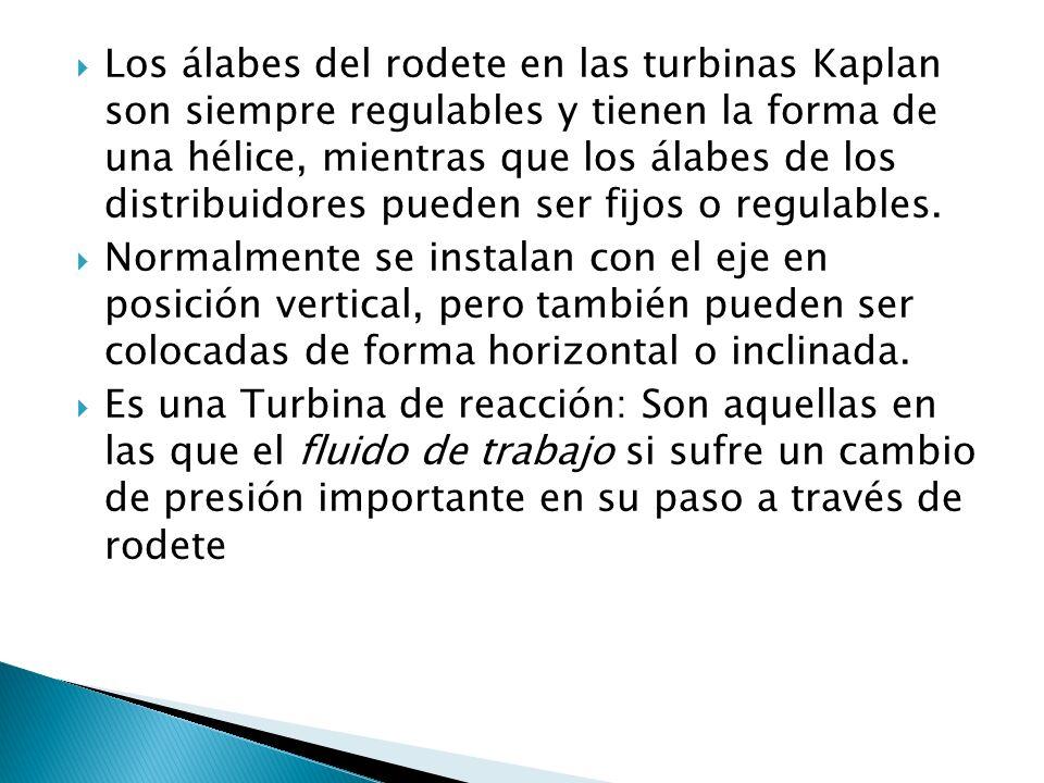 Los álabes del rodete en las turbinas Kaplan son siempre regulables y tienen la forma de una hélice, mientras que los álabes de los distribuidores pue