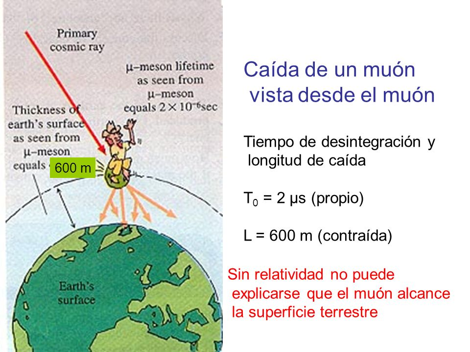 Caída de un muón vista desde el muón Tiempo de desintegración y longitud de caída T 0 = 2 μs (propio) L = 600 m (contraída) 600 m Sin relatividad no p