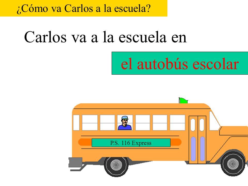 Carlos va a la escuela en P.S. 116 el coche el carro ¿Cómo va Carlos a la escuela?