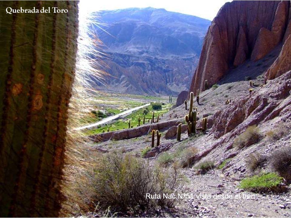 El Portal de los Andes- Comienza al ascenso