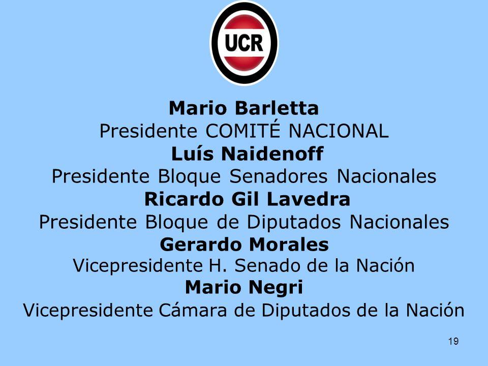 19 Mario Barletta Presidente COMITÉ NACIONAL Luís Naidenoff Presidente Bloque Senadores Nacionales Ricardo Gil Lavedra Presidente Bloque de Diputados