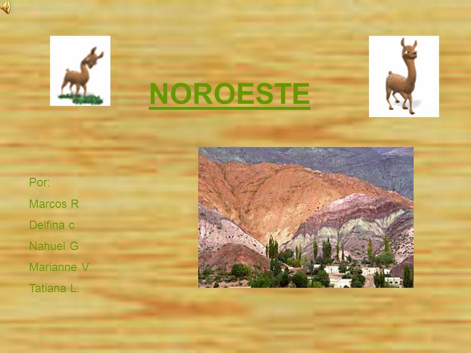 Cordillera Oriental Dos cordones montañosos Hay quebradas: las más importantes son las de Humahuaca, Santa Maria- Guachipas y la del Toro Hay valles: Calchaquíes y Lerma.