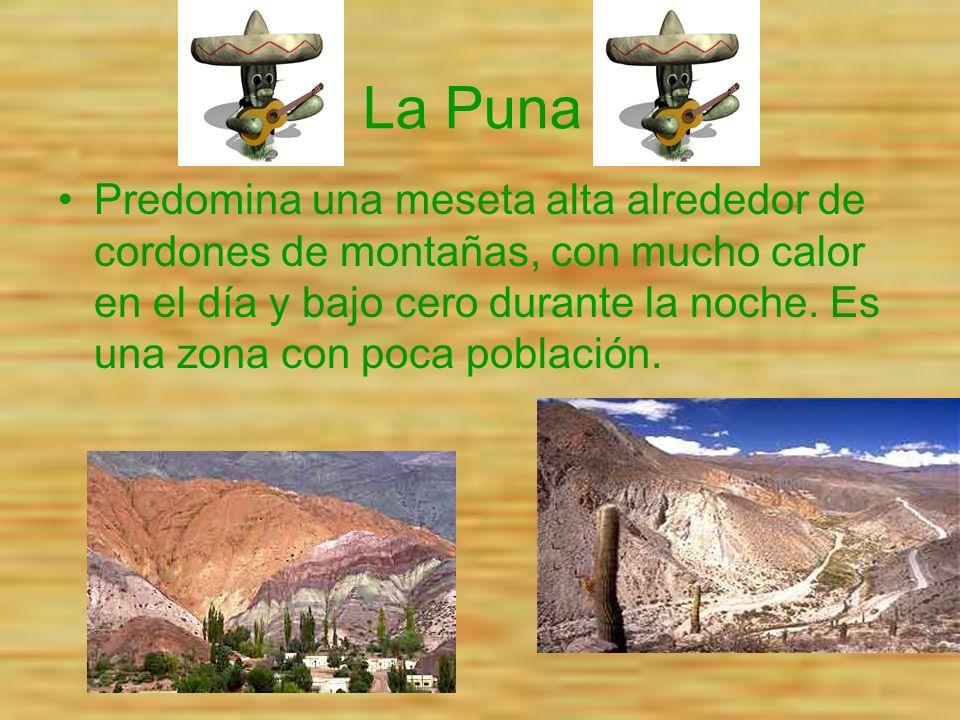 La Puna Predomina una meseta alta alrededor de cordones de montañas, con mucho calor en el día y bajo cero durante la noche. Es una zona con poca pobl
