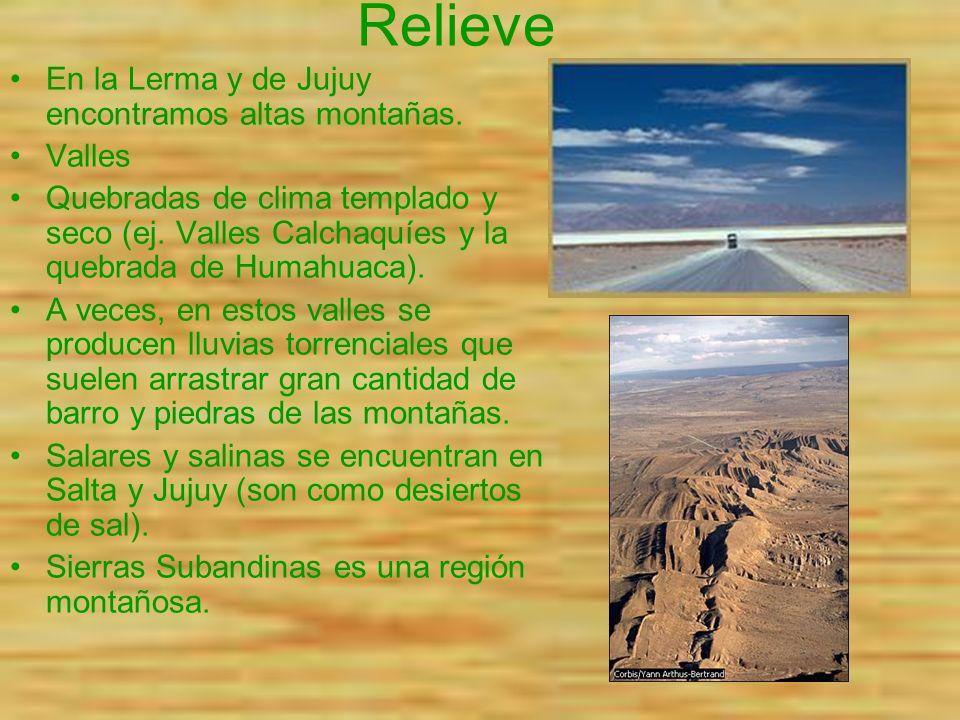 Relieve En la Lerma y de Jujuy encontramos altas montañas. Valles Quebradas de clima templado y seco (ej. Valles Calchaquíes y la quebrada de Humahuac