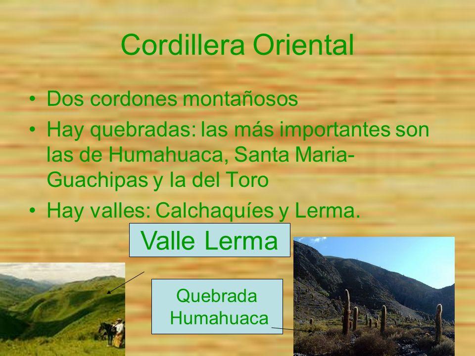 Cordillera Oriental Dos cordones montañosos Hay quebradas: las más importantes son las de Humahuaca, Santa Maria- Guachipas y la del Toro Hay valles: