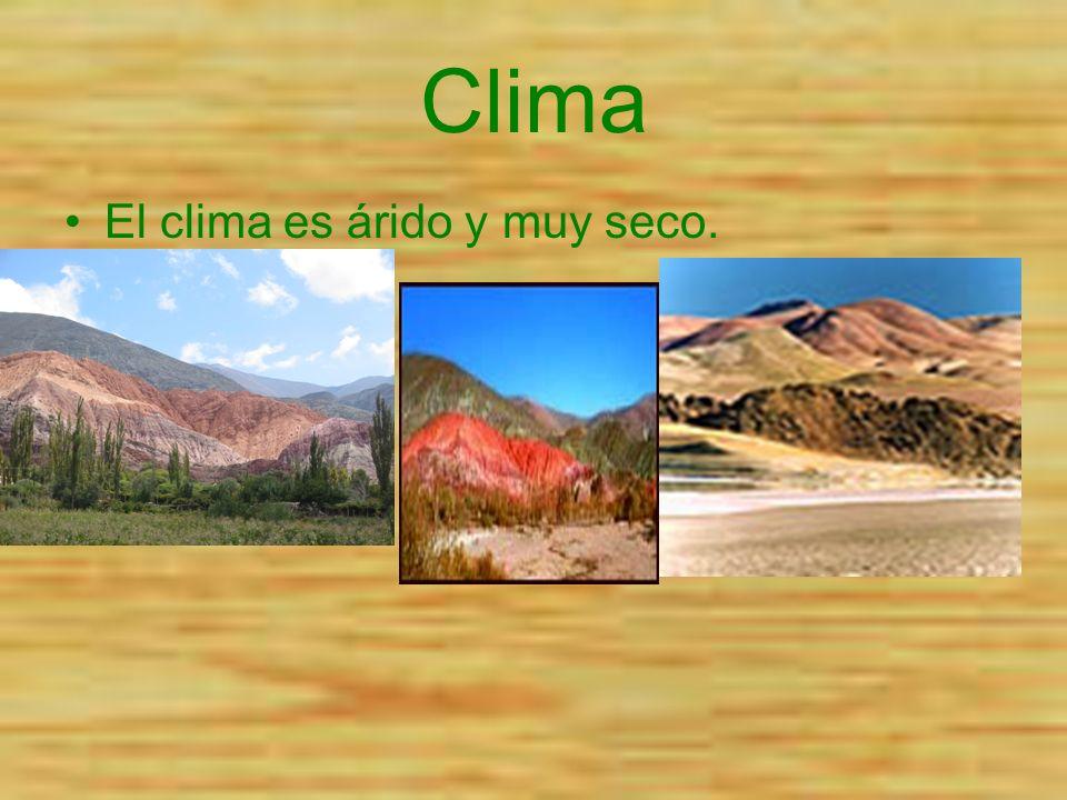 Clima El clima es árido y muy seco.