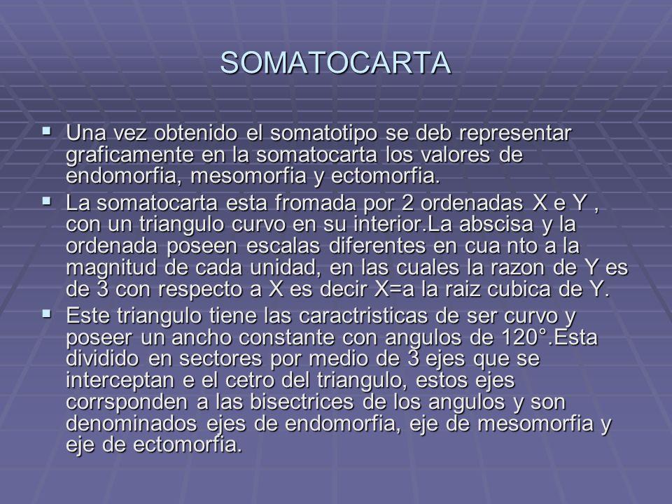 SOMATOCARTA Una vez obtenido el somatotipo se deb representar graficamente en la somatocarta los valores de endomorfia, mesomorfia y ectomorfia. Una v
