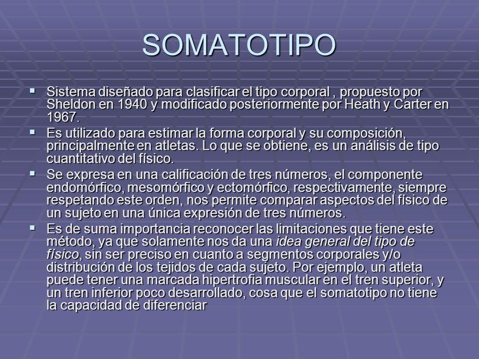 SOMATOTIPO Sistema diseñado para clasificar el tipo corporal, propuesto por Sheldon en 1940 y modificado posteriormente por Heath y Carter en 1967. Si