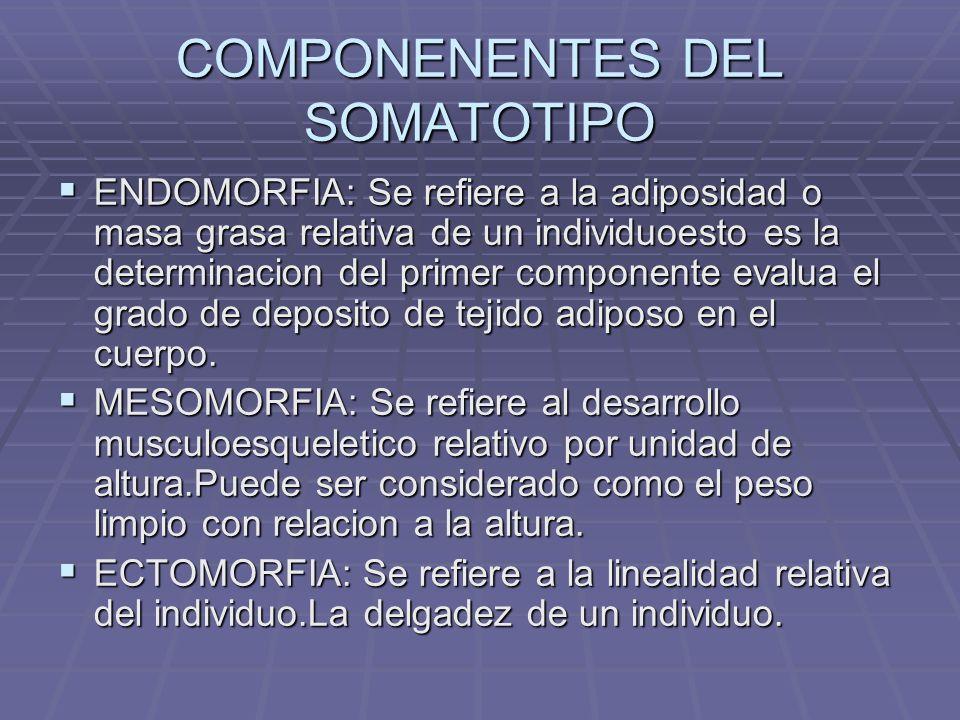 COMPONENENTES DEL SOMATOTIPO ENDOMORFIA: Se refiere a la adiposidad o masa grasa relativa de un individuoesto es la determinacion del primer component