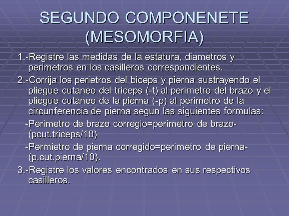 SEGUNDO COMPONENETE (MESOMORFIA) 1.-Registre las medidas de la estatura, diametros y perimetros en los casilleros correspondientes. 2.-Corrija los per