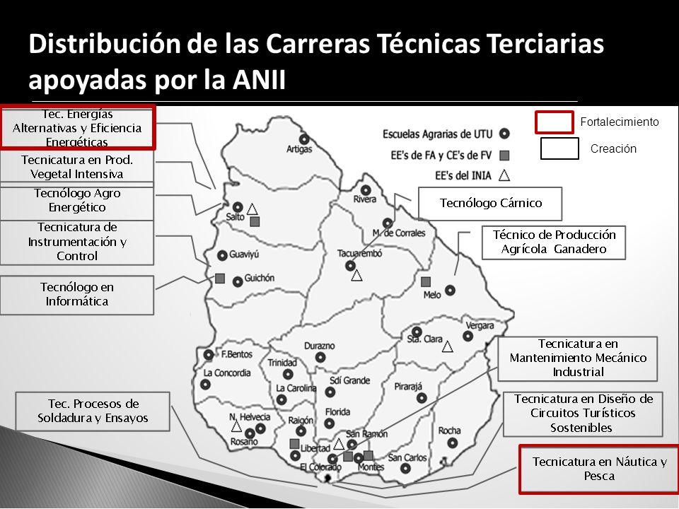 Distribución de las Carreras Técnicas Terciarias apoyadas por la ANII Fortalecimiento Creación