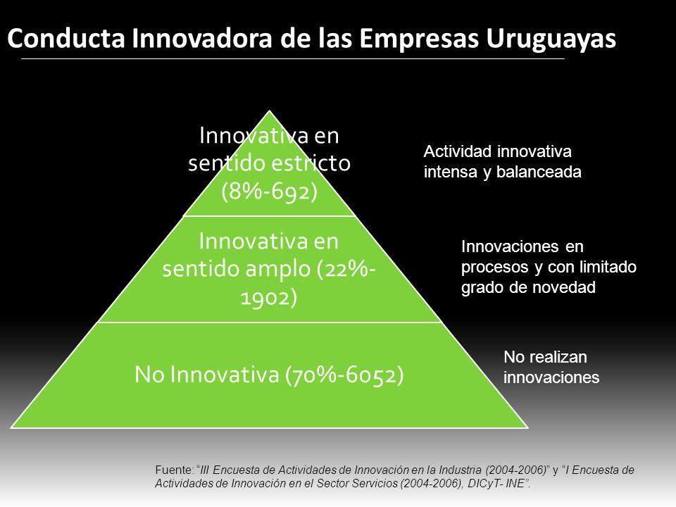 Innovativa en sentido estricto (8%-692) Innovativa en sentido amplo (22%- 1902) No Innovativa (70%-6052) Actividad innovativa intensa y balanceada Inn