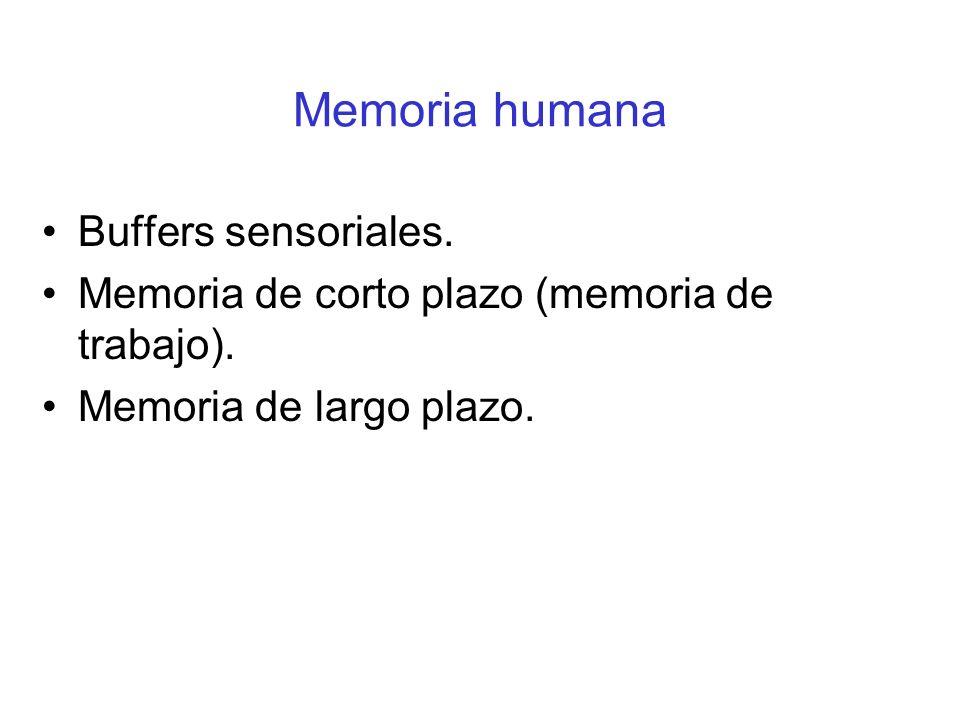 Memoria humana Buffers sensoriales. Memoria de corto plazo (memoria de trabajo). Memoria de largo plazo.