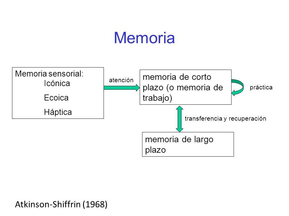Memoria Memoria sensorial: Icónica Ecoica Háptica atención memoria de corto plazo (o memoria de trabajo) transferencia y recuperación memoria de largo plazo práctica Atkinson-Shiffrin (1968)