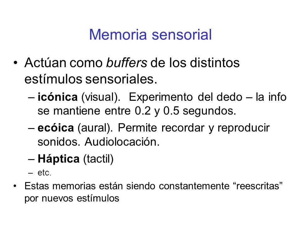 Memoria sensorial Actúan como buffers de los distintos estímulos sensoriales. –icónica (visual). Experimento del dedo – la info se mantiene entre 0.2
