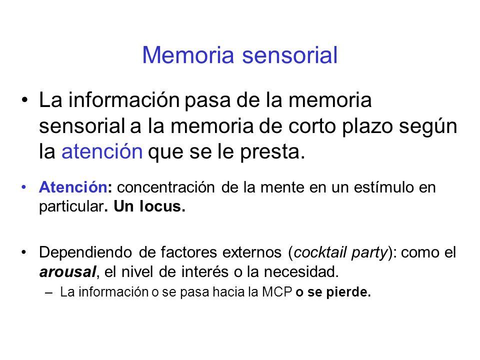 Memoria sensorial La información pasa de la memoria sensorial a la memoria de corto plazo según la atención que se le presta. Atención: concentración