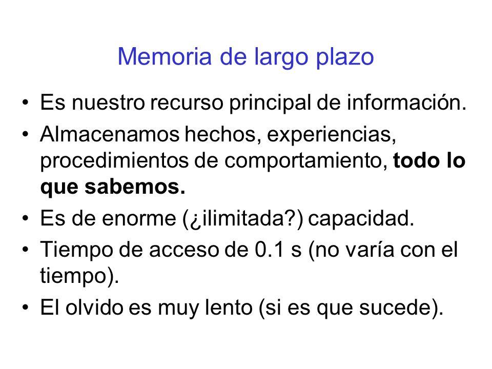 Memoria de largo plazo Es nuestro recurso principal de información. Almacenamos hechos, experiencias, procedimientos de comportamiento, todo lo que sa