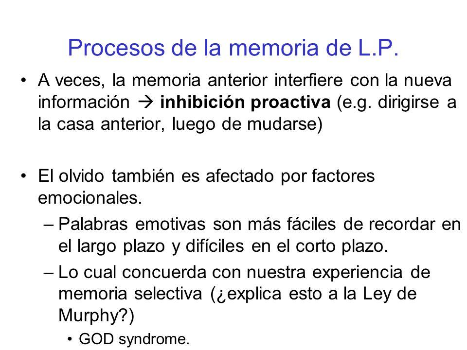 Procesos de la memoria de L.P. A veces, la memoria anterior interfiere con la nueva información inhibición proactiva (e.g. dirigirse a la casa anterio