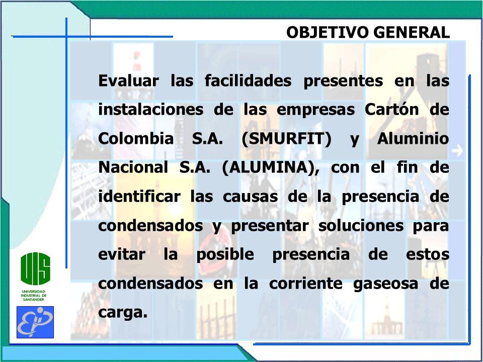 OBJETIVO GENERAL Evaluar las facilidades presentes en las instalaciones de las empresas Cartón de Colombia S.A. (SMURFIT) y Aluminio Nacional S.A. (AL