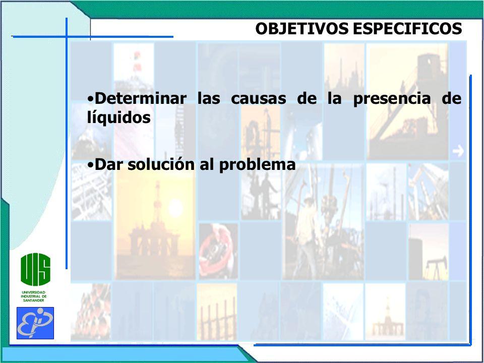 OBJETIVOS ESPECIFICOS Determinar las causas de la presencia de líquidos Dar solución al problema