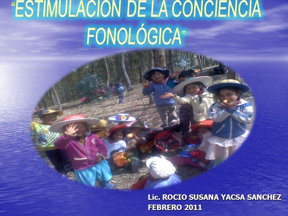 Lic. ROCIO SUSANA YACSA SANCHEZ FEBRERO 2011