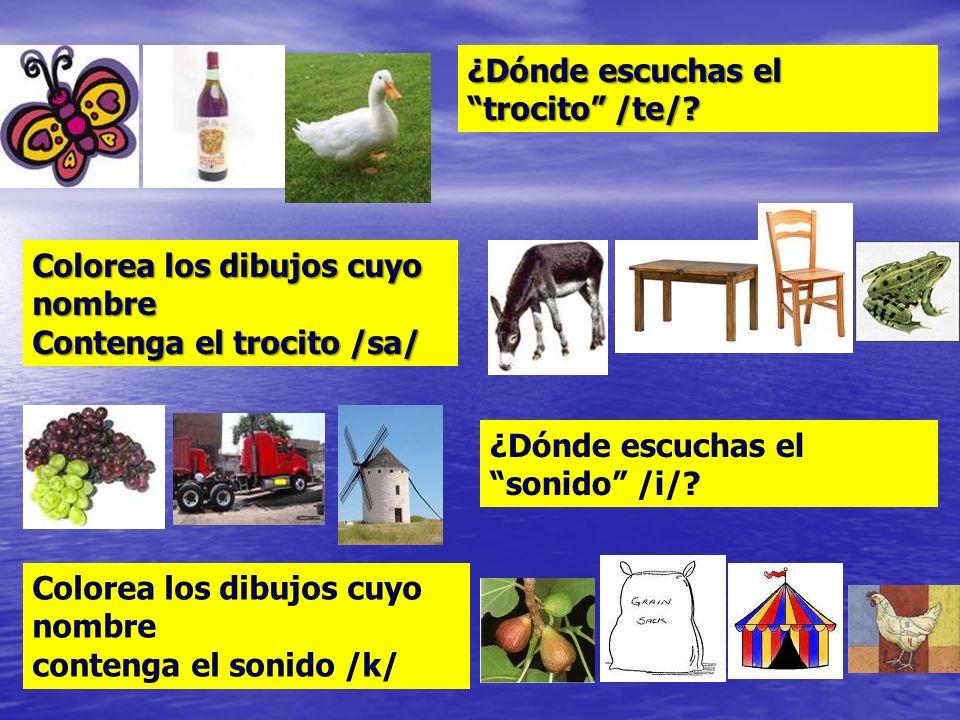 Reconocer en palabras: Sílabas de distinta estructura y en distintas posiciones Sílabas de distinta estructura y en distintas posiciones Fonemas en di