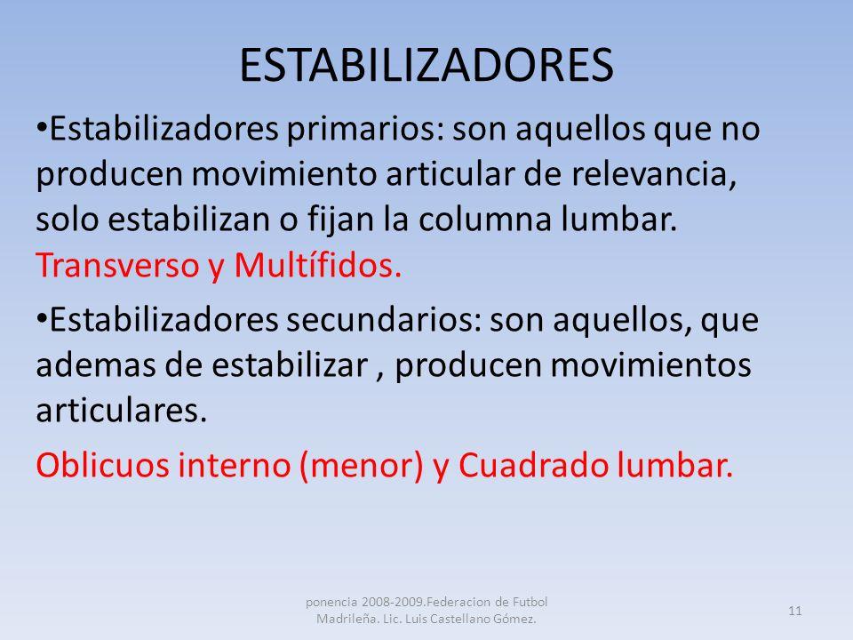 ESTABILIZADORES Estabilizadores primarios: son aquellos que no producen movimiento articular de relevancia, solo estabilizan o fijan la columna lumbar