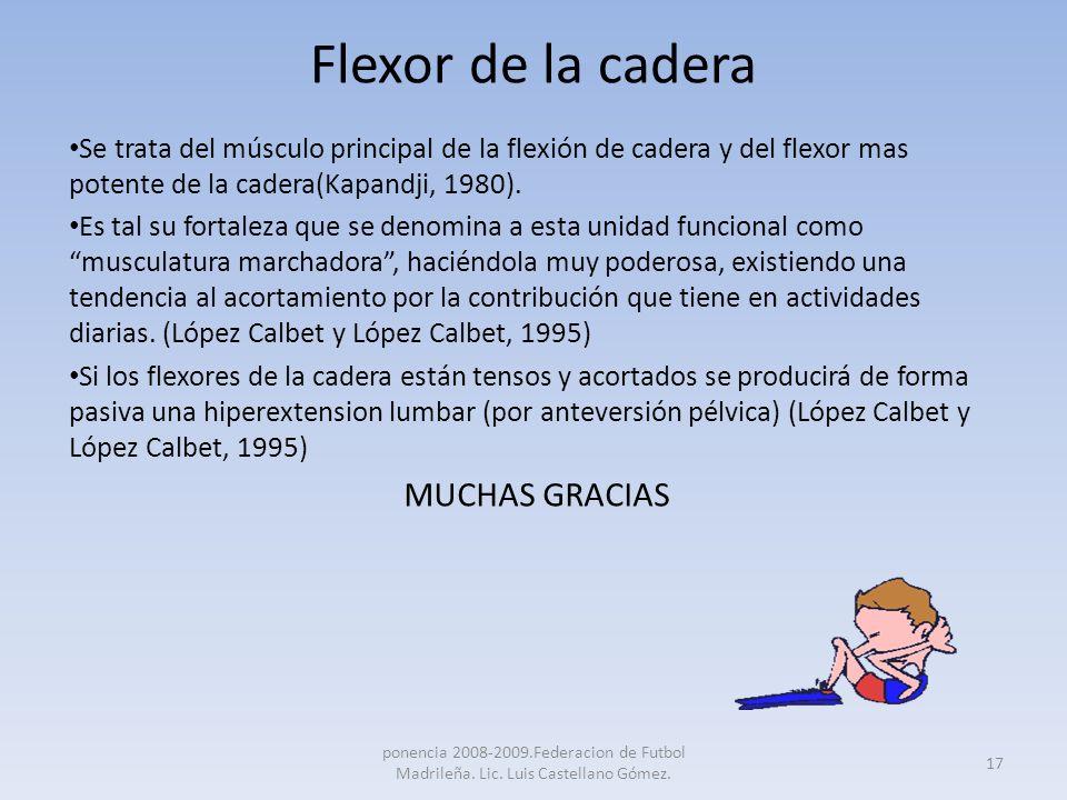Flexor de la cadera Se trata del músculo principal de la flexión de cadera y del flexor mas potente de la cadera(Kapandji, 1980). Es tal su fortaleza