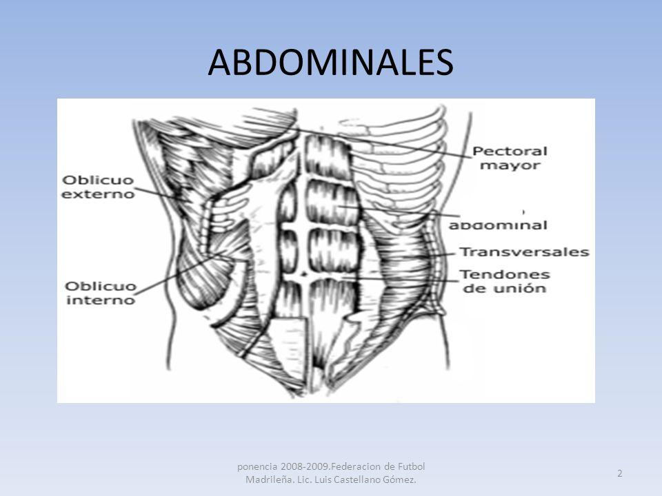 ABDOMINALES Recto anterior(1): su principal función es la de flexionar el tronco, aunque colaboran en la función estabilizadora.