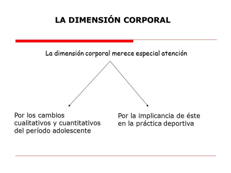 LA DIMENSIÓN CORPORAL La dimensión corporal merece especial atención Por los cambios cualitativos y cuantitativos del período adolescente Por la impli