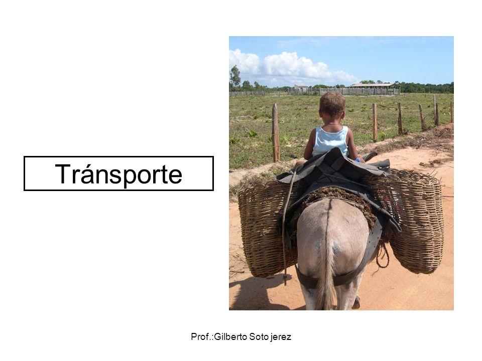 Prof.:Gilberto Soto jerez Tránsporte