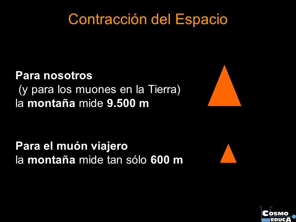 Contracción del Espacio Para nosotros (y para los muones en la Tierra) la montaña mide 9.500 m Para el muón viajero la montaña mide tan sólo 600 m