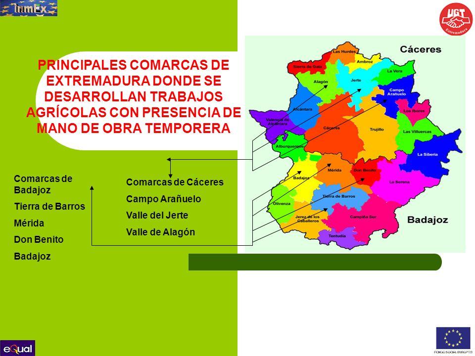 Ayuntamientos: Ayuntamiento de Almendralejo C/ Mérida, 1, 6200 Almendralejo (Badajoz).