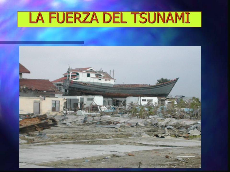 TSUNAMIS Tsunami.- Vocablo japonés, que quiere decir grandes olas en el puerto o bahía.