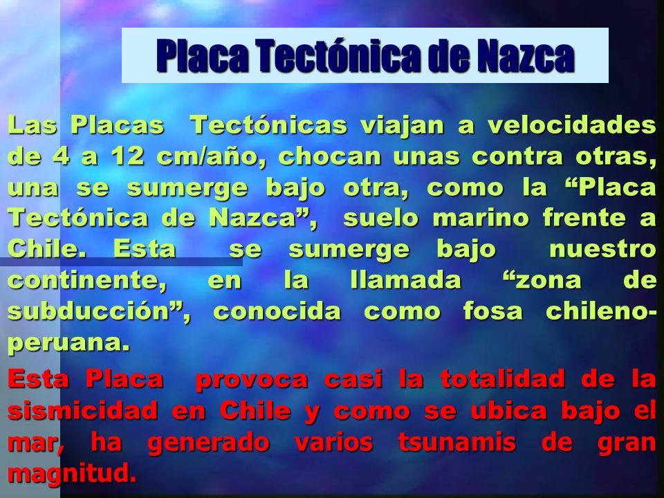 Placa Tectónica de Nazca Las Placas Tectónicas viajan a velocidades de 4 a 12 cm/año, chocan unas contra otras, una se sumerge bajo otra, como la Plac