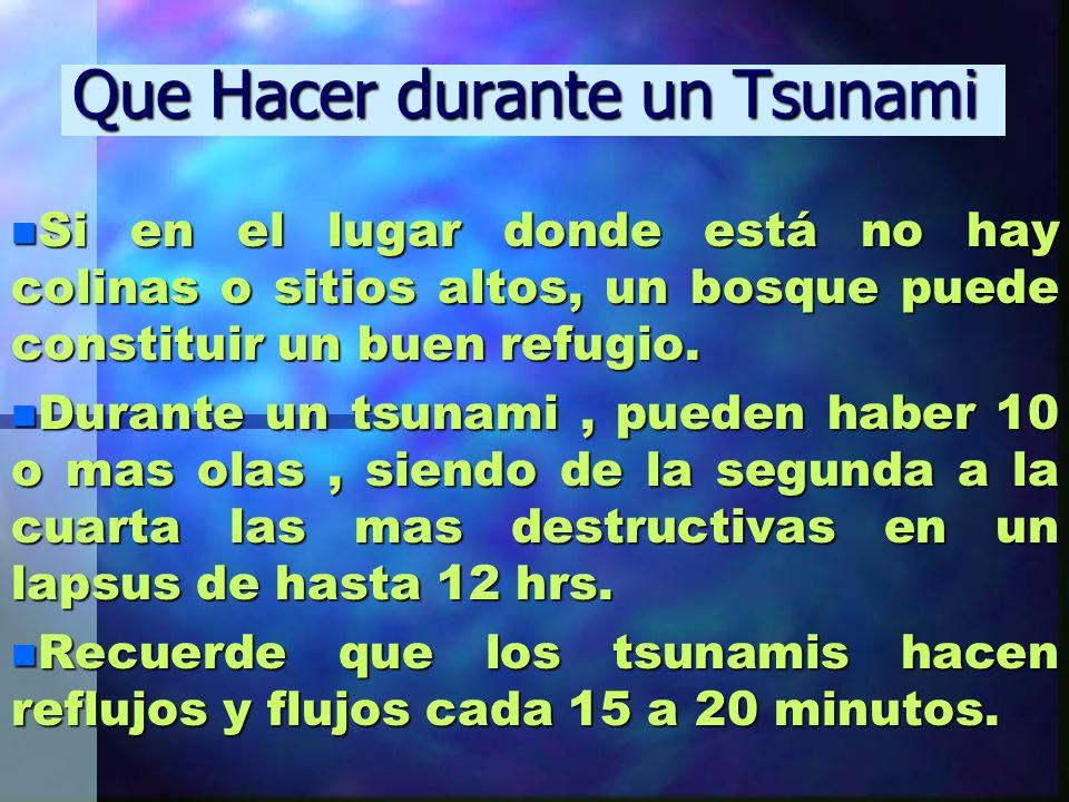 Que Hacer durante un Tsunami n Si en el lugar donde está no hay colinas o sitios altos, un bosque puede constituir un buen refugio. n Durante un tsuna