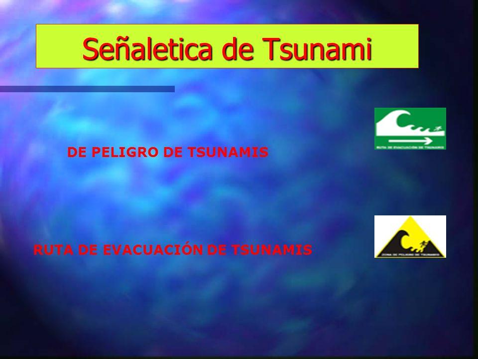 Señaletica de Tsunami DE PELIGRO DE TSUNAMIS RUTA DE EVACUACIÓN DE TSUNAMIS