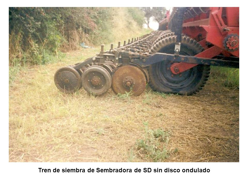 LABRANZA CONVENCIONAL Ventajas • Controla muy bien las malezas, menor costo de herbicidas.