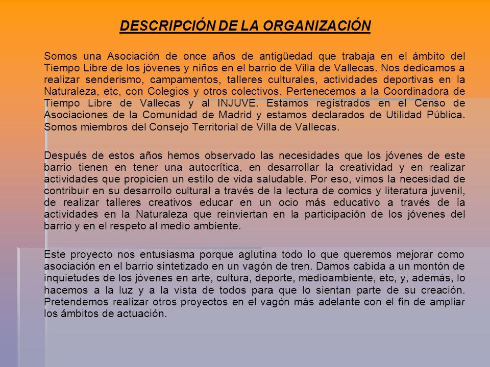 DESCRIPCIÓN DE LA ORGANIZACIÓN Somos una Asociación de once años de antigüedad que trabaja en el ámbito del Tiempo Libre de los jóvenes y niños en el barrio de Villa de Vallecas.
