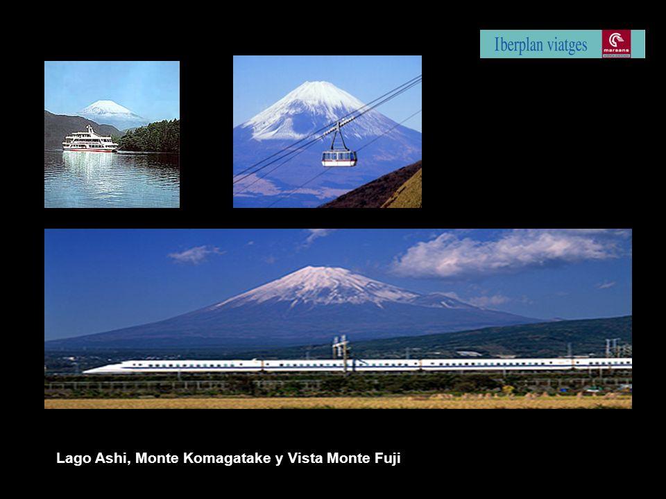 Lago Ashi, Monte Komagatake y Vista Monte Fuji