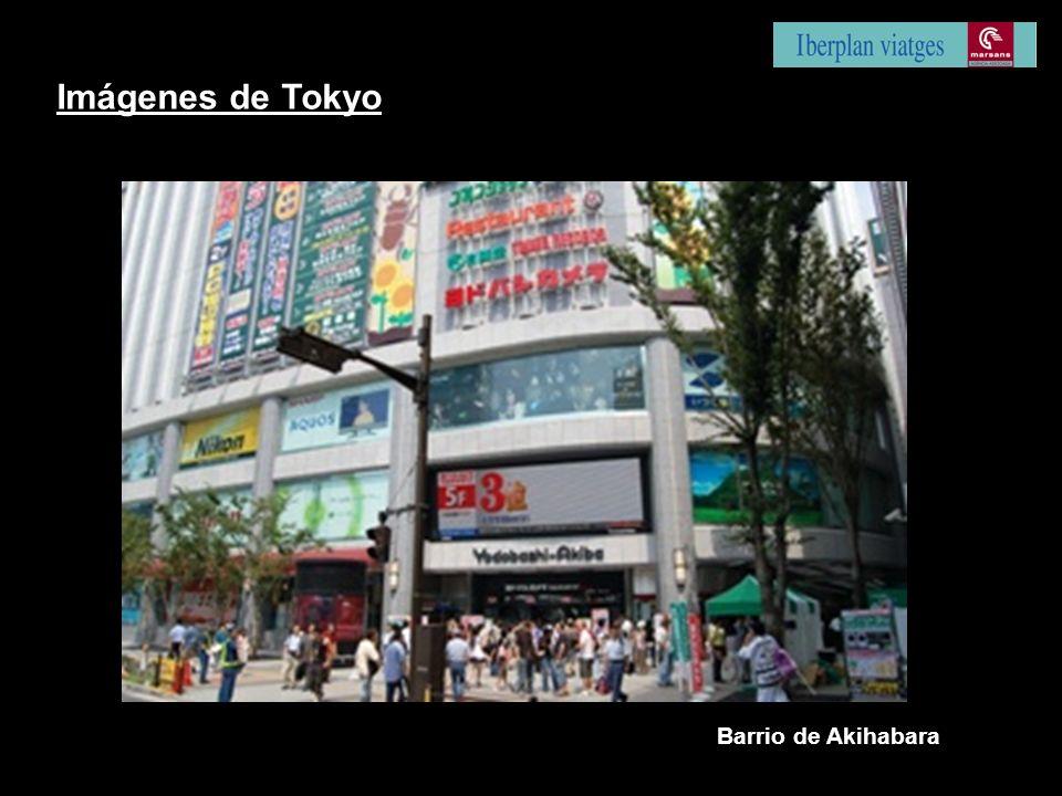 Imágenes de Tokyo Barrio de Akihabara
