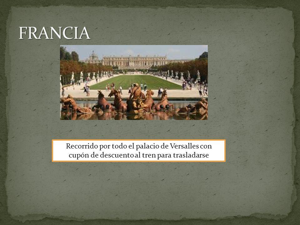 Recorrido por todo el palacio de Versalles con cupón de descuento al tren para trasladarse
