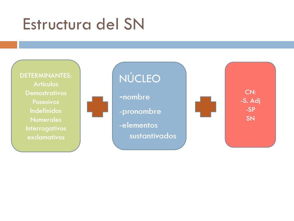 Estructura del SN DETERMINANTES: Artículos Demostrativos Posesivos Indefinidos Numerales Interrogativos exclamativos NÚCLEO - nombre -pronombre -eleme