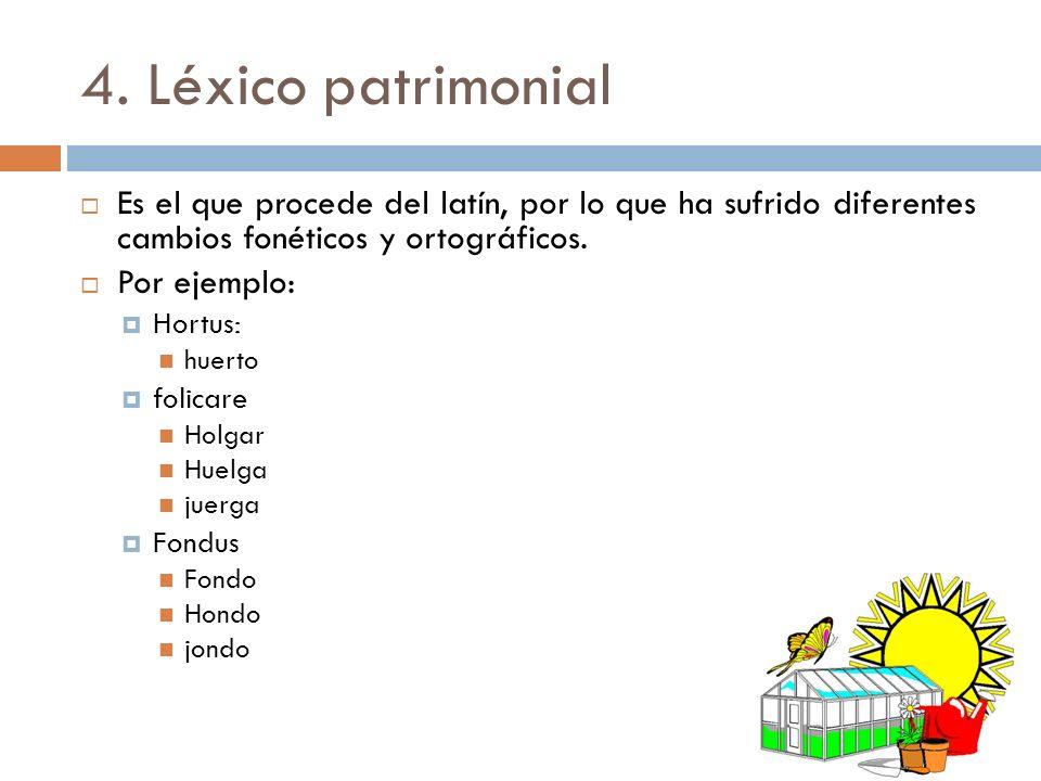 4. Léxico patrimonial Es el que procede del latín, por lo que ha sufrido diferentes cambios fonéticos y ortográficos. Por ejemplo: Hortus: huerto foli