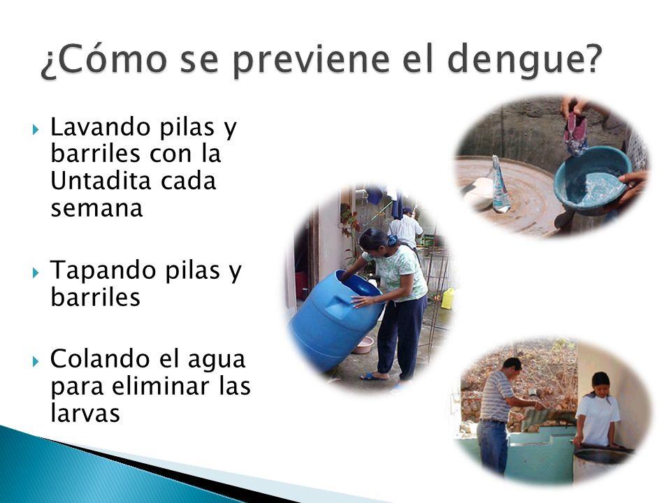 Lavando pilas y barriles con la Untadita cada semana Tapando pilas y barriles Colando el agua para eliminar las larvas