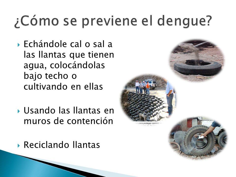 Echándole cal o sal a las llantas que tienen agua, colocándolas bajo techo o cultivando en ellas Usando las llantas en muros de contención Reciclando llantas